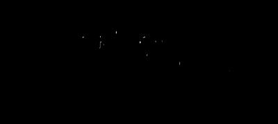 Logopuur